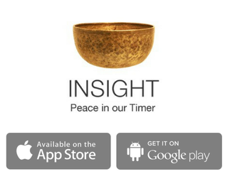 Free Guided Meditations on Insight