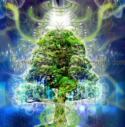 Tree Spirit Activation, Channeling, & Healing